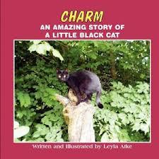 CharmCat Cover